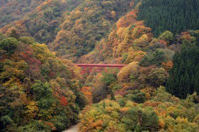 高井橋の紅葉